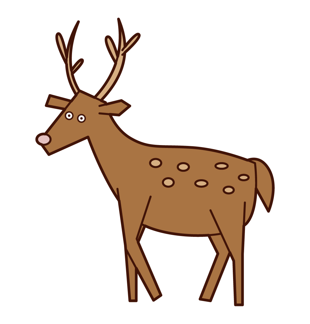 Illustration of a walking deer