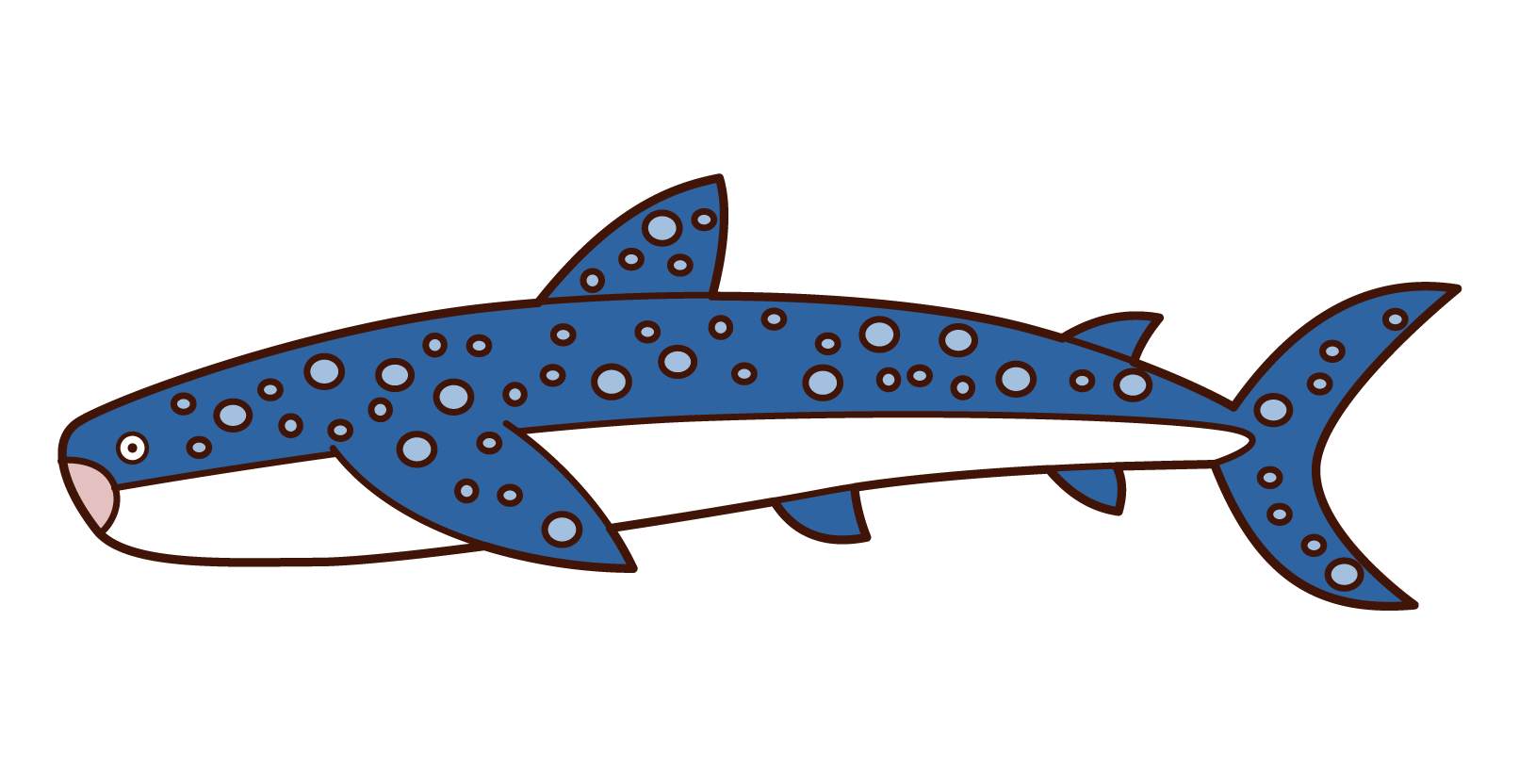 Illustration of whale shark