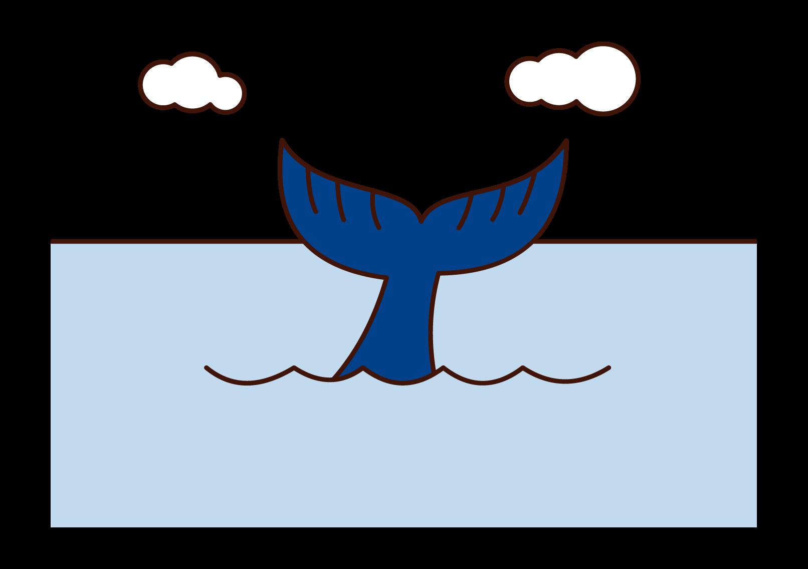 クジラの尻尾のイラスト