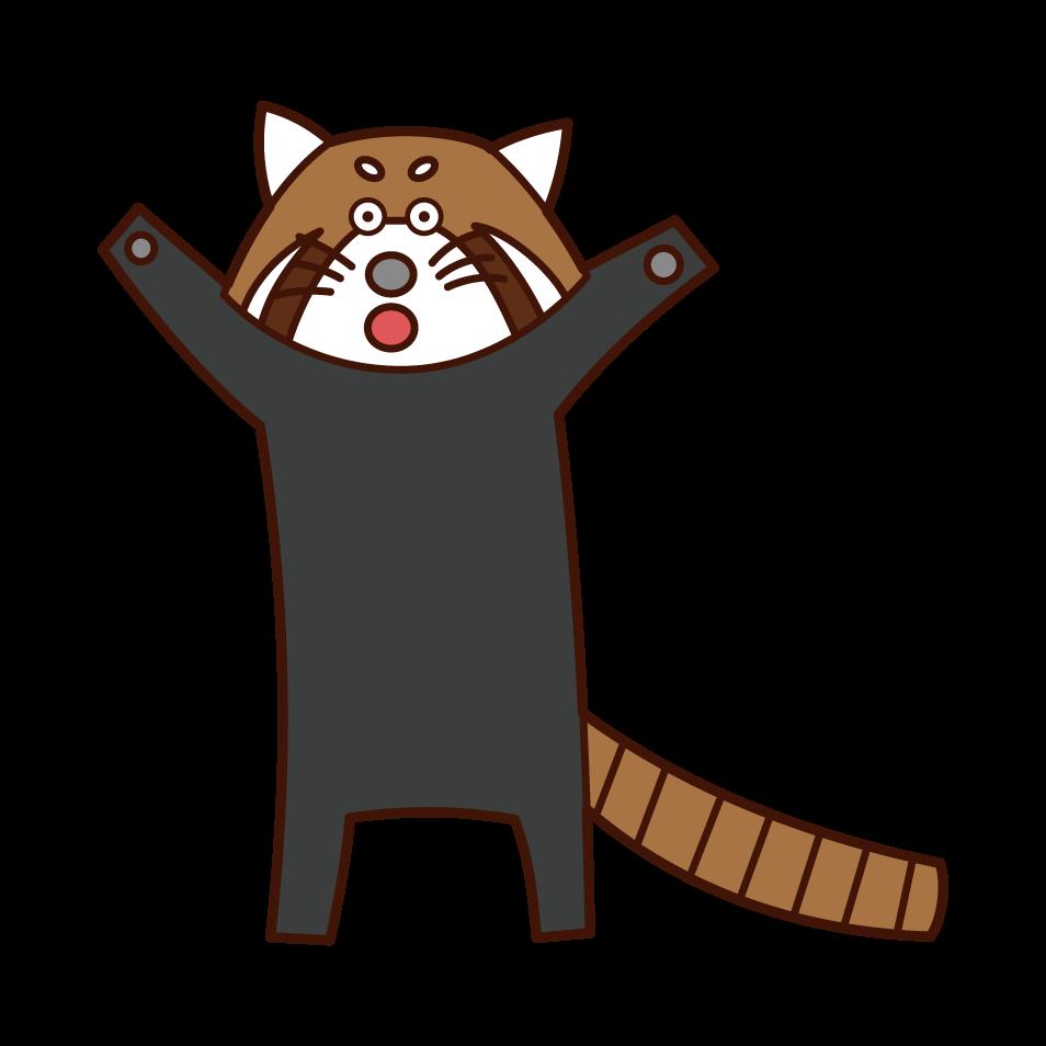 立つレッサーパンダのイラスト