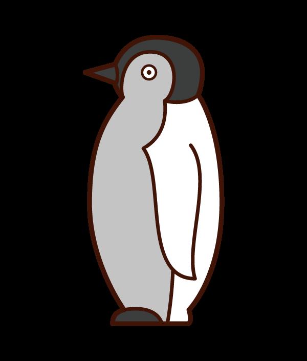 ペンギンの赤ちゃんのイラスト