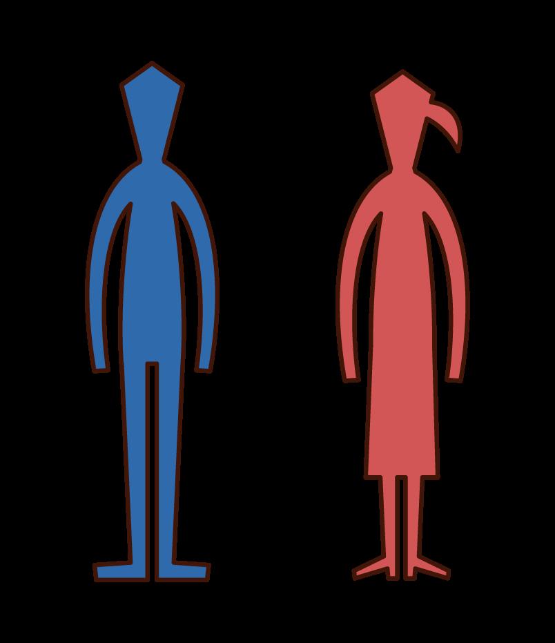 人のシルエット(男性と女性)のイラスト