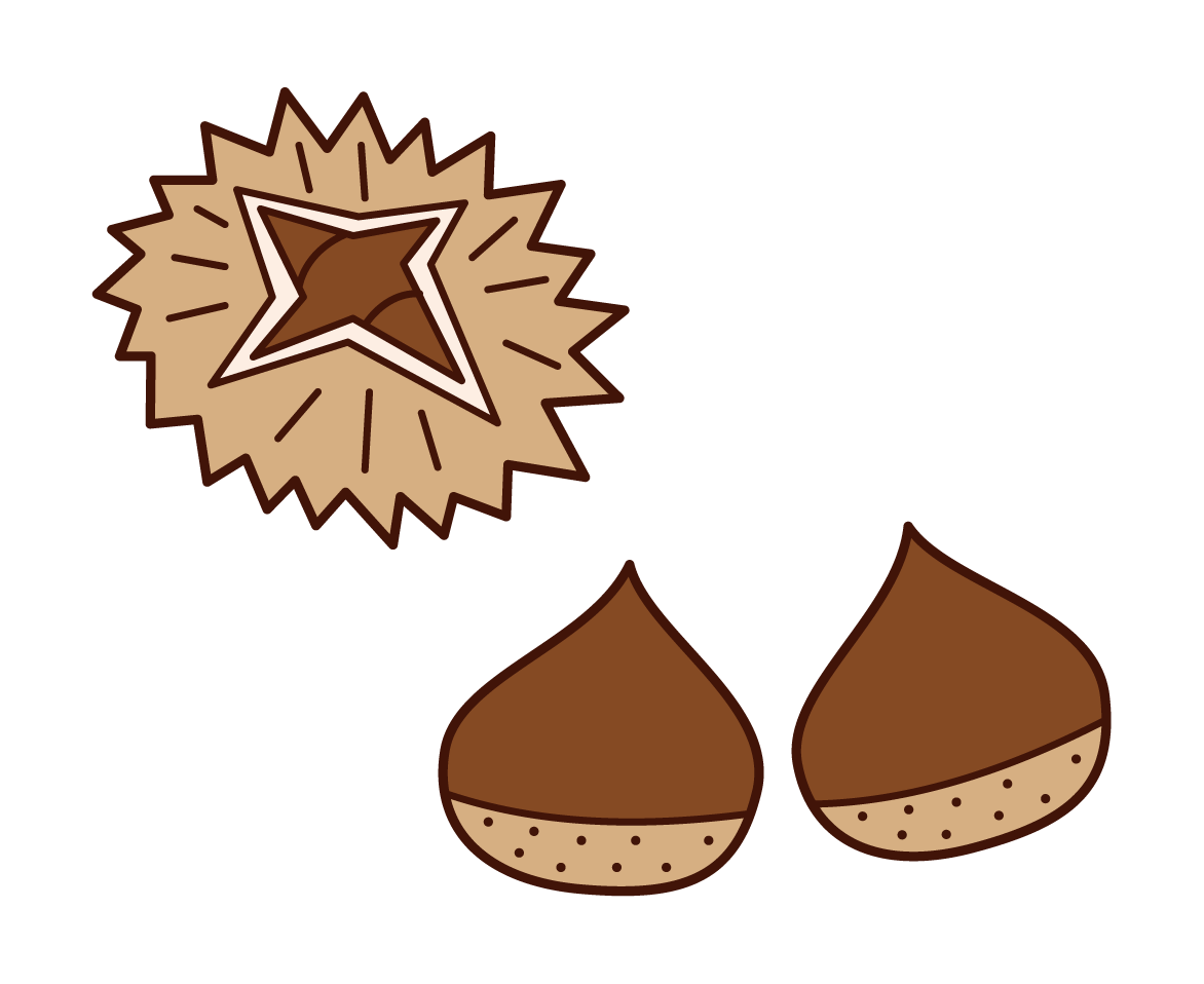 Illustrations of chestnuts