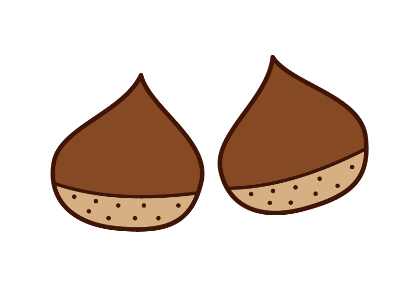 Chestnut Illustrations
