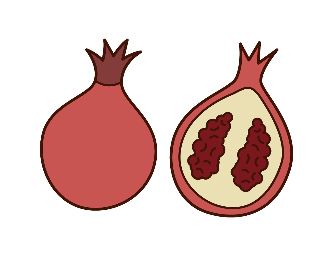 Pomegranate Illustrations