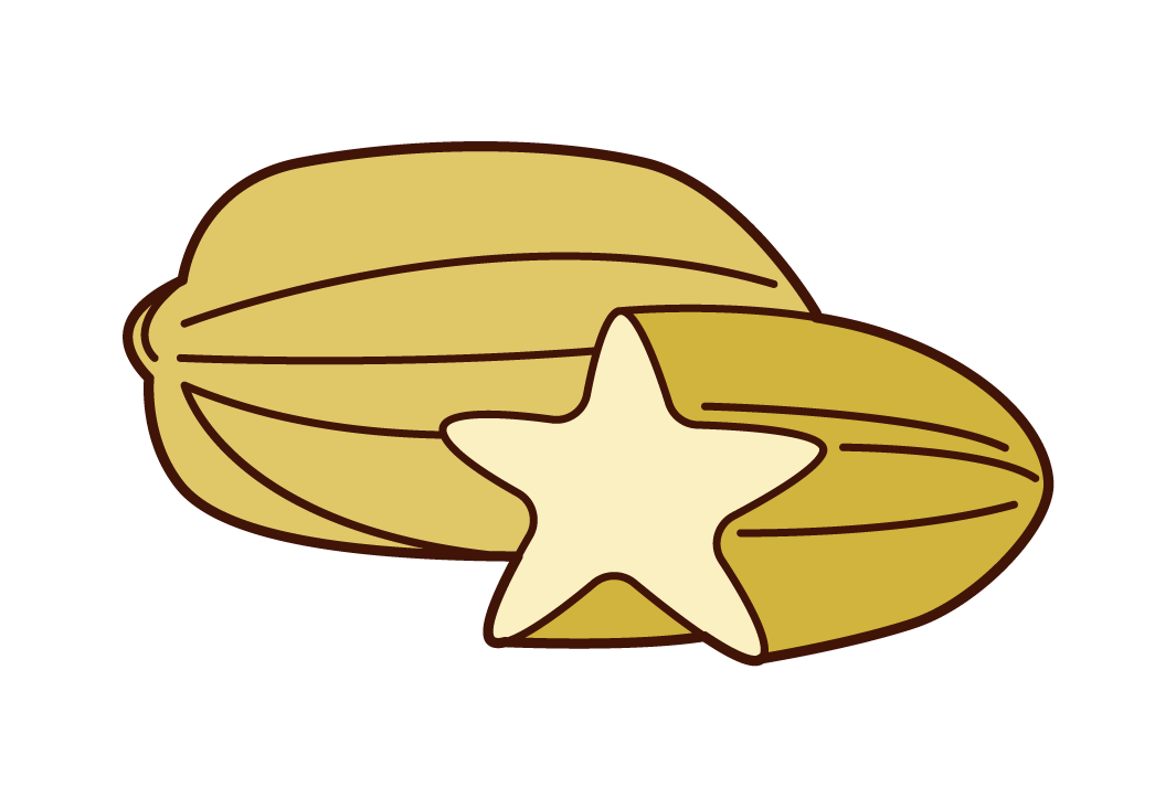 Star Fruit Illustrations
