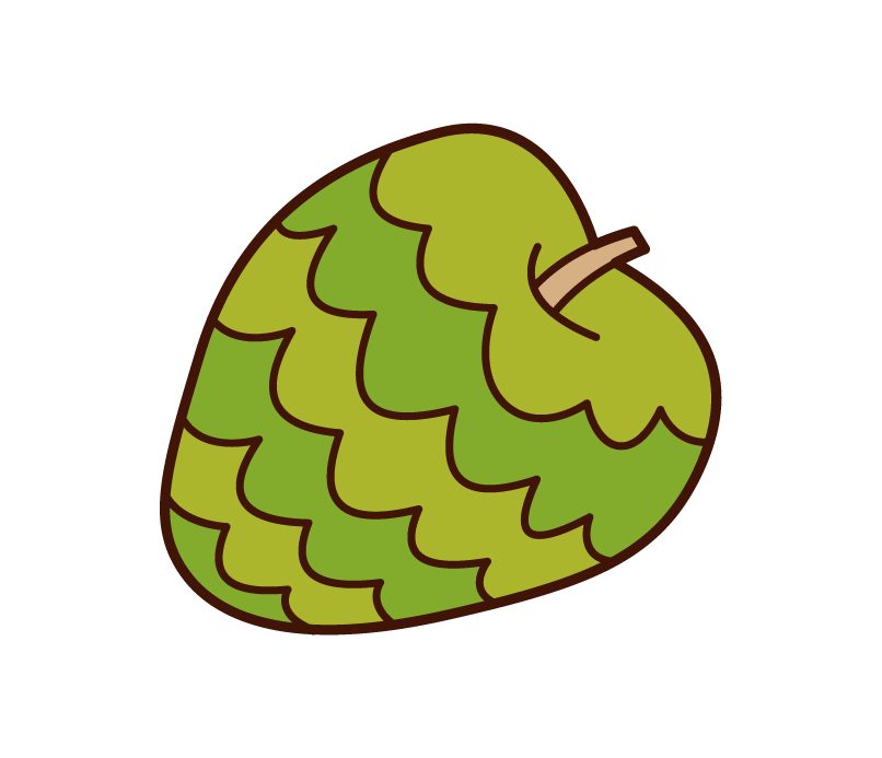 Illustration of Cherimoya