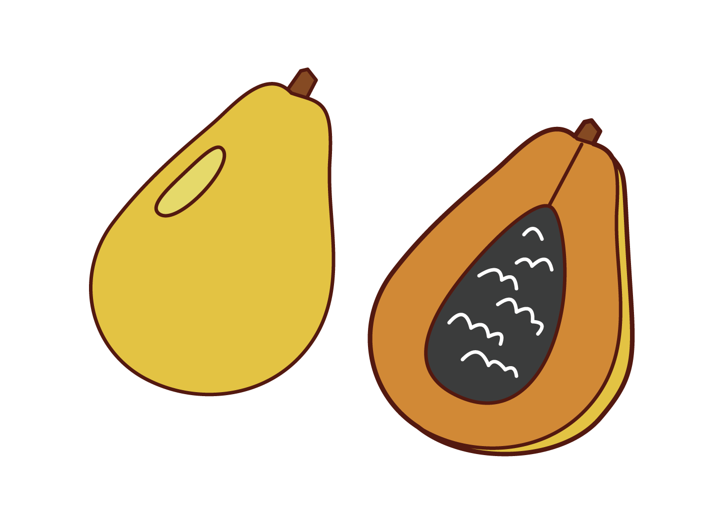 Papaya Illustrations