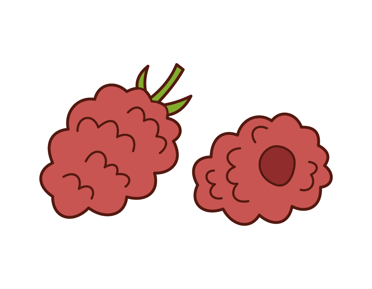 Raspberry Illustrations