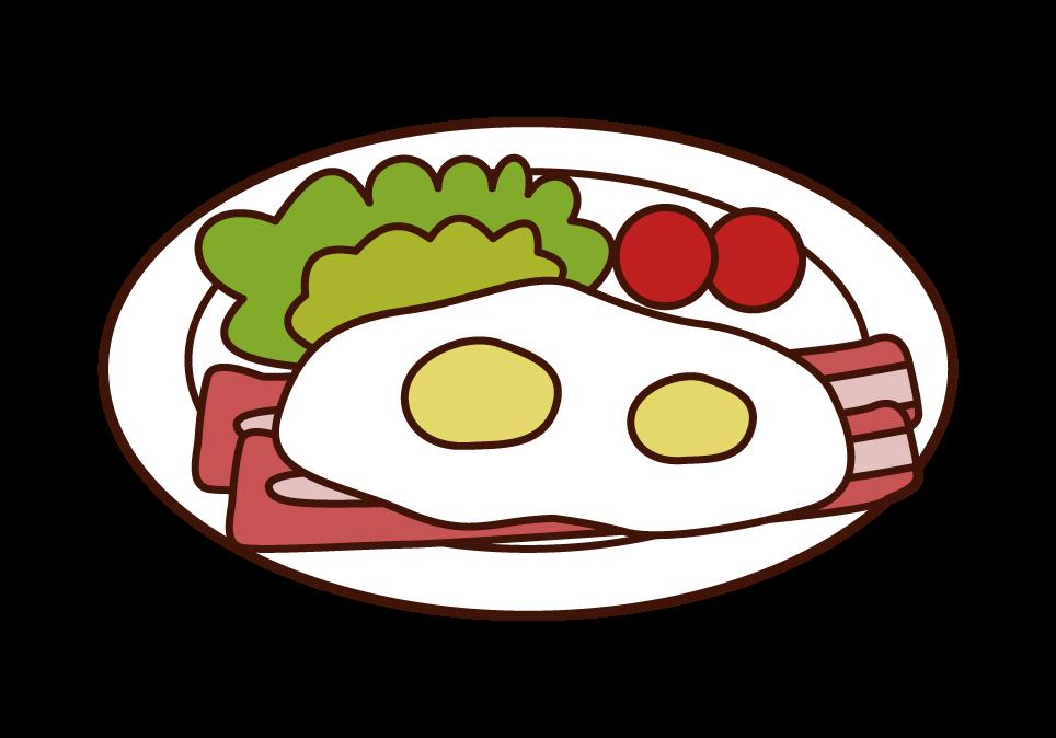 ベーコンエッグのイラスト