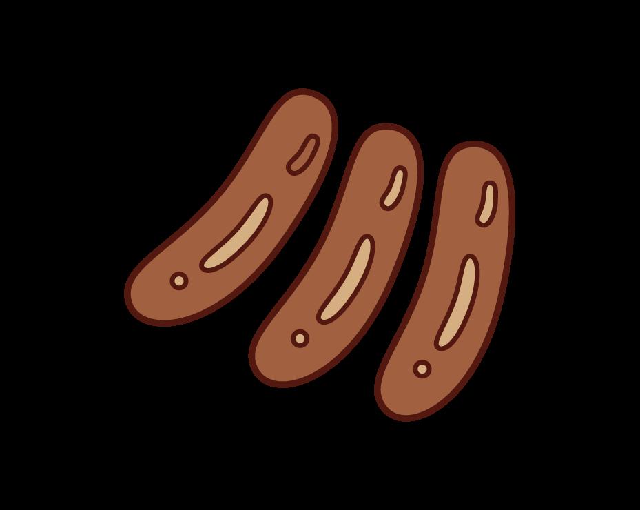 Winner Sausage Illustration