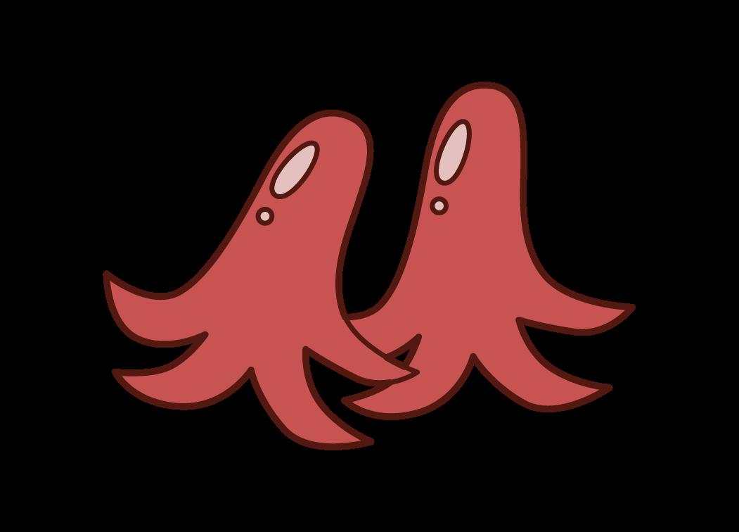 タコの形をしたウィンナーのイラスト