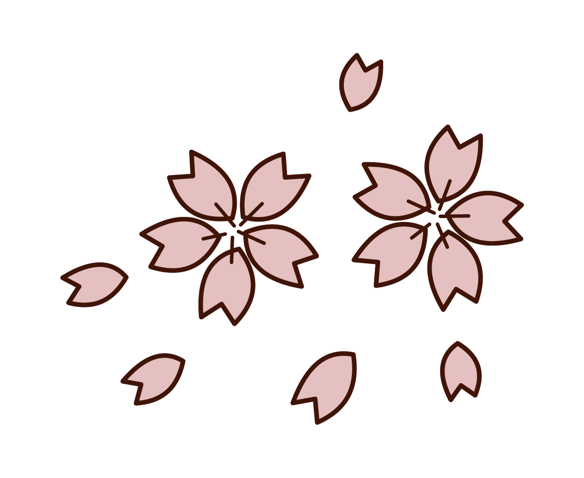 Illustration of cherry blossom petals