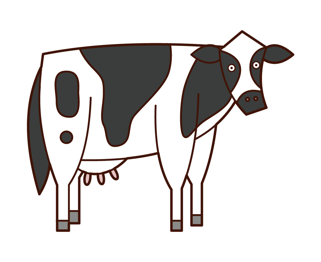 Illustration of a dairy cow