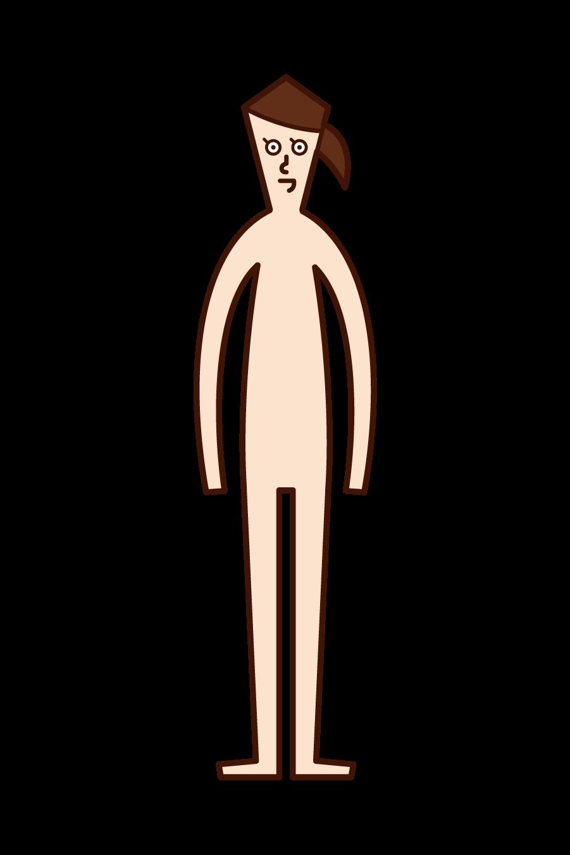 Illustration of human body (woman)