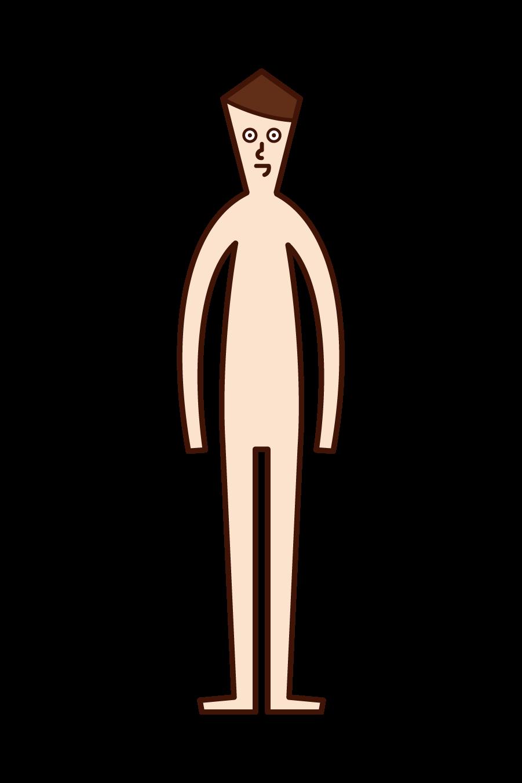 Illustration of human body (man)