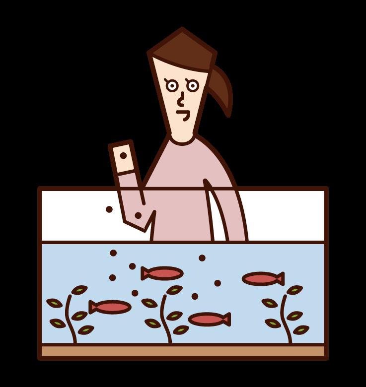 水槽の魚に餌を与える人(女性)のイラスト