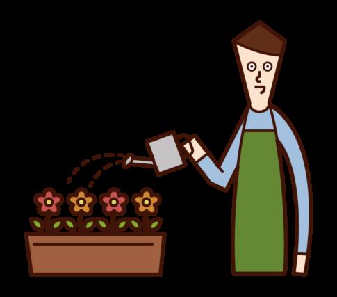 花に水をやる人(男性)のイラスト