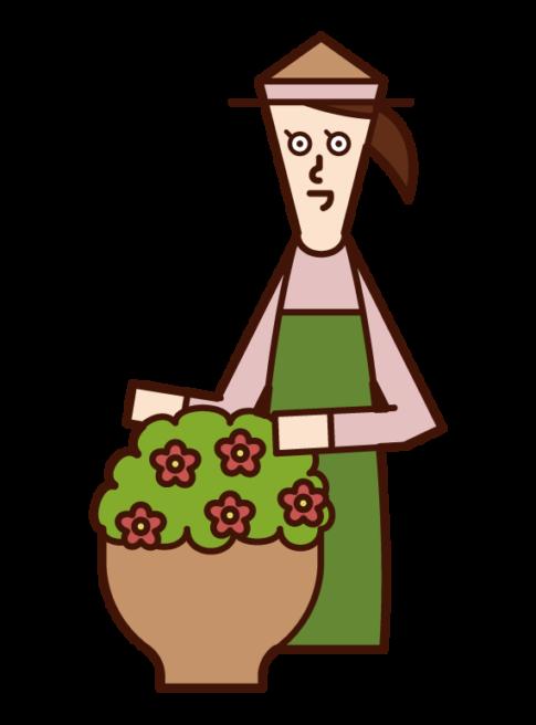 お花の手入れをする人(女性)のイラスト
